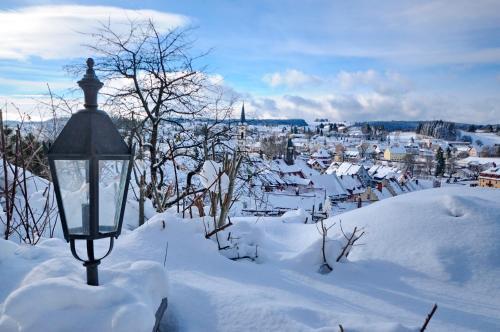Hotel Pictures: Villa Alenberg, Löffingen