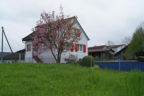 Fewo Arbonerstrasse Romanshorn