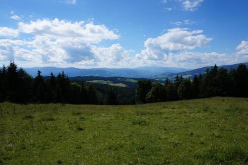 Φωτογραφίες: Radlhütte, Hintertheissenegg