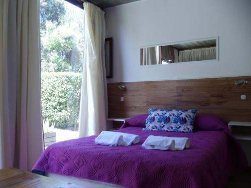 Hotelfoto's: Dandy Suites, Mar de las Pampas