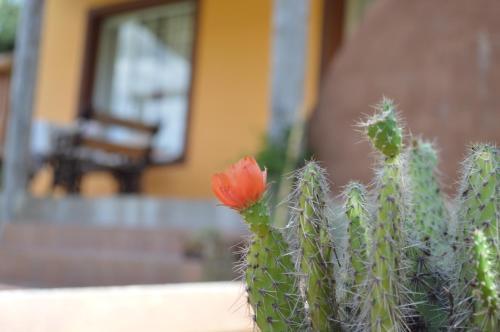 Foto Hotel: , Tandil