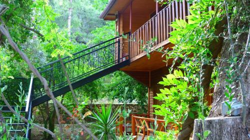Cirali Simge Holiday Houses