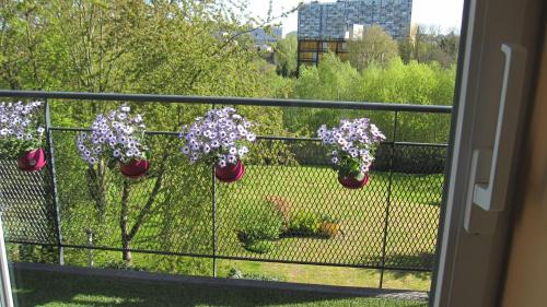 Zdjęcia hotelu: , Charleroi