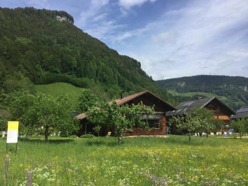 Foto Hotel: Ferienhaus Hager, Mellau