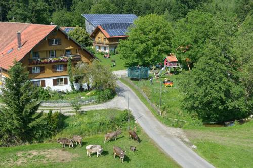 Hotel Pictures: , Opfenbach