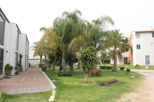 Cholula Lofts