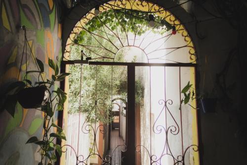 Φωτογραφίες: Babilonia Hostel, Κόρδοβα