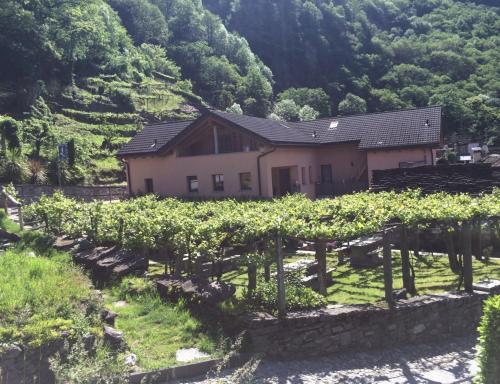 Hotel Pictures: , Giumaglio