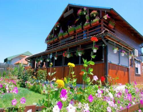 Pension Casa Cu Flori