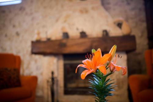 Hotel Pictures: , Belmonte
