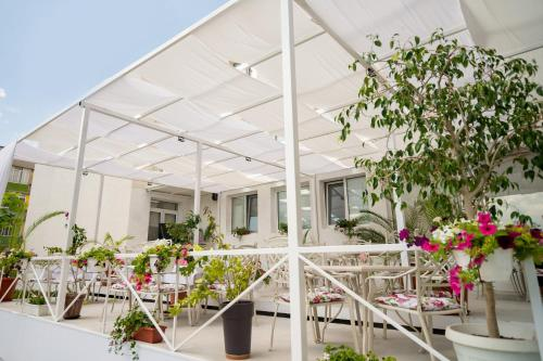 Hotelbilder: Hotel Ivanoff, Svishtov