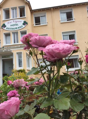 Hotel Pictures: , La Roche-Posay