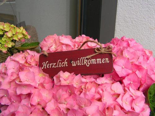Photos de l'hôtel: Alpina Appartements, Schröcken