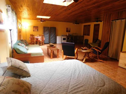 Hotel Pictures: 9 Monkey Trail, Nuevo Arenal
