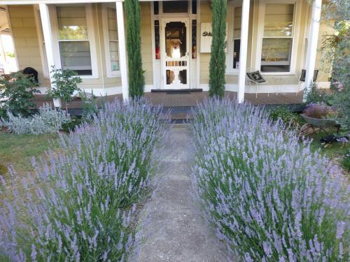 Hotellbilder: La Maison St Arnaud, Rutherglen