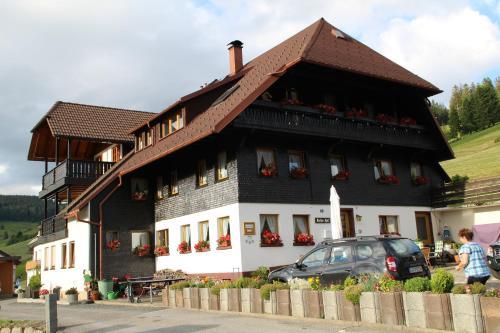 Hotel Pictures: Gästehaus Weilerhof - Apartments, Todtnauberg