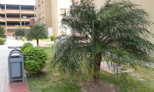 Zdjęcia hotelu: Departamento Juan Domingo Peron, Resistencia