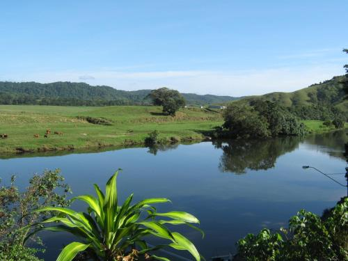 Hotellikuvia: Daintree Riverview Lodges, Daintree