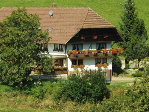 Hotel Pictures: Schüsselehof, Oberprechtal