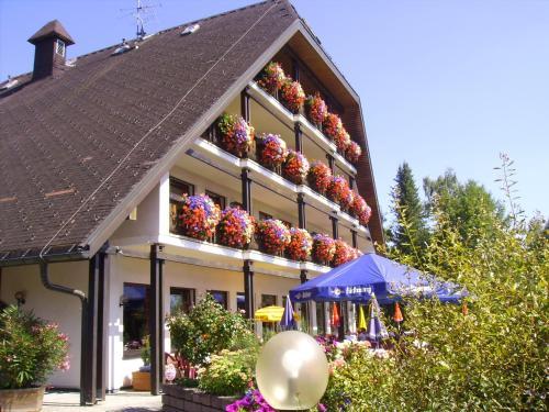 Hotel Pictures: Schwarzwald Gasthof Sternen-Post, Bräunlingen