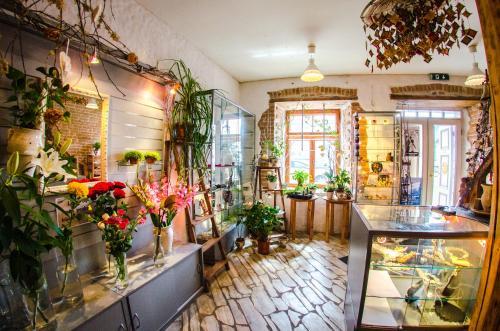 Hotel Pictures: Beguta Guest House, Haapsalu