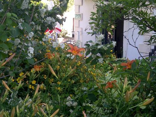 Hotel Pictures: , Vals-les-Bains