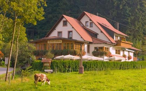 Hotel Pictures: Gasthaus - Pension Hohberg, Durbach