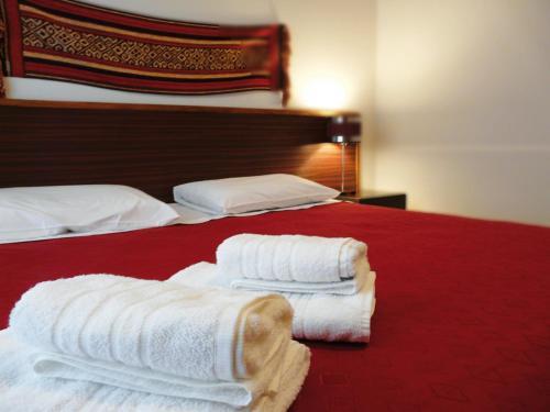 ホテル写真: Ayres de la Patagonia Hotel, Santa Rosa