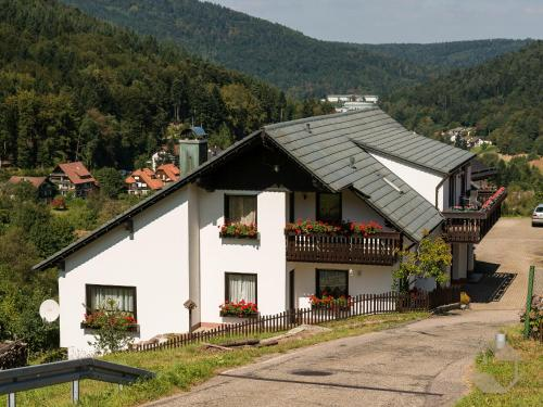 Hotel Pictures: Ferienwohnungen Eva-Maria und Anna, Bad Herrenalb