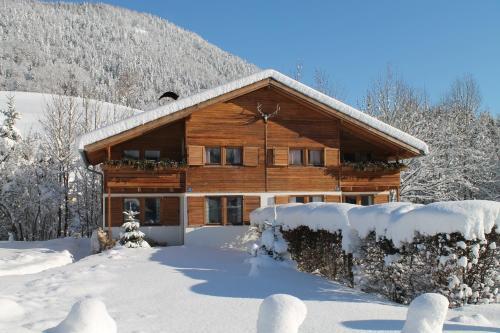 ホテル写真: Apartment Senn, Kirchdorf in Tirol