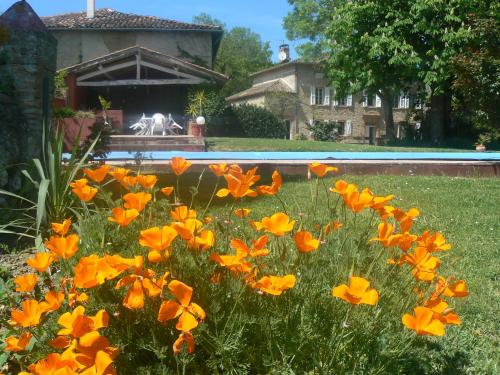 Hotel Pictures: , Giroussens