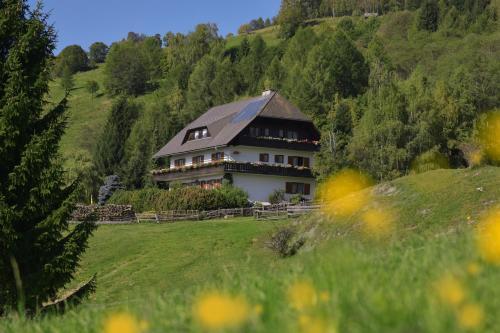 Hotel Pictures: Gästehaus Bischof, Schöder