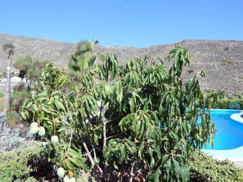 Hotel Pictures: , Puerto de Santiago