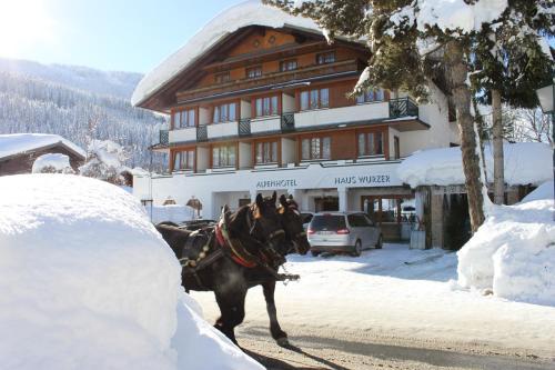 Фотографии отеля: Alpenhotel Wurzer, Фильцмос