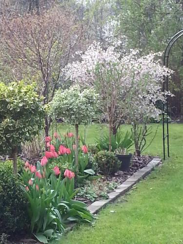 Hotel Pictures: Gartenapartment in Stadtvilla, Mölln