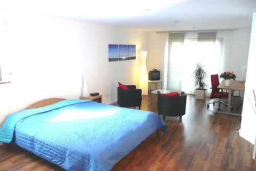 Hotel Pictures: B&B + Ferienwohnung Familie Karle, Binzen