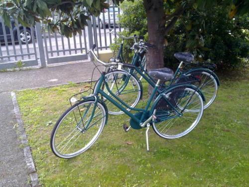 ركوب الدراجة الهوائية في محيط سكن فيالي فينيسيا
