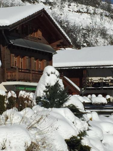 Hotel Pictures: , Vercorin