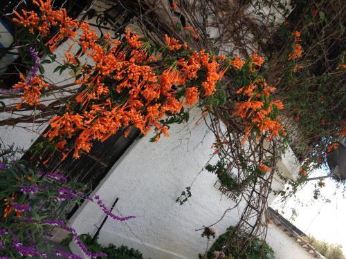 Hotel Pictures: , Sangolquí