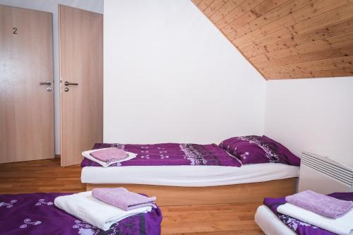 Hotel Pictures: Penzion u Machalínků, Hovorany