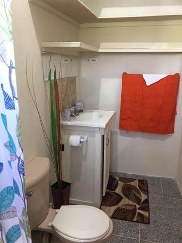 Hotellbilder: Princessmary Holiday Apartments, Christ Church