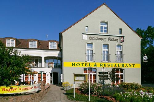 Hotel Pictures: , Oranienbaum-Wörlitz