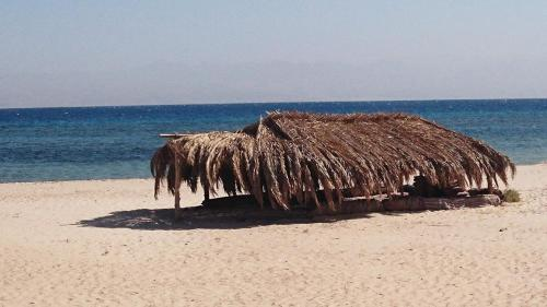 Hotel Pictures: Buddha Camp, Nuweiba