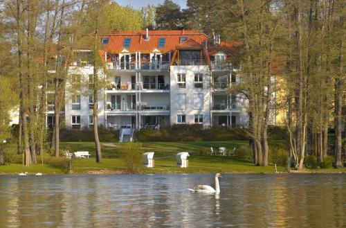 Hotel Pictures: Ferienwohnung Amelia in der Villa Seeblick, Bad Saarow