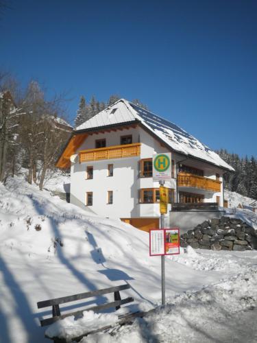 Hotel Pictures: Ferienwohnungen DaHeim Titisee, Hinterzarten