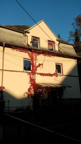 Hotel Pictures: , Oelsnitz