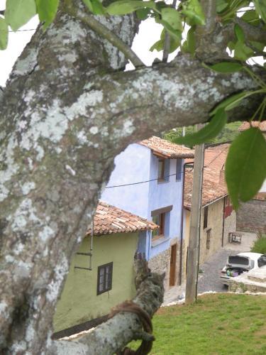 Hotel Pictures: Casa Azul Rodiles, Selorio