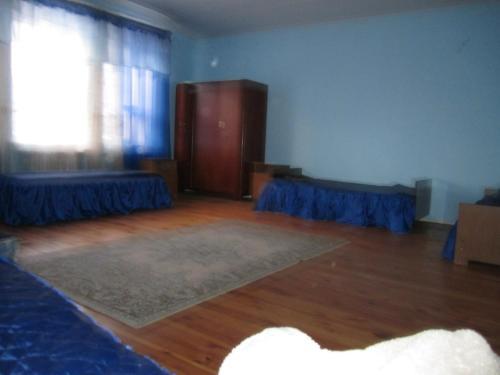 Hotel Pictures: , Zadomlya