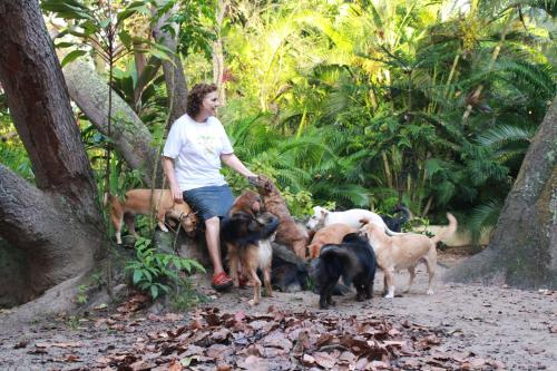 Hotel Pictures: Nature & Dog-lovers Experience in Bahia, Arembepe