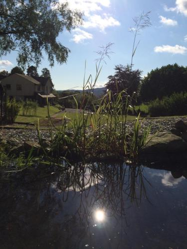 Hotel Pictures: Willowbank, Ambleside